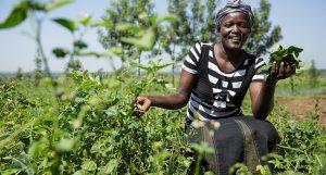 Heifer International Empowers Women